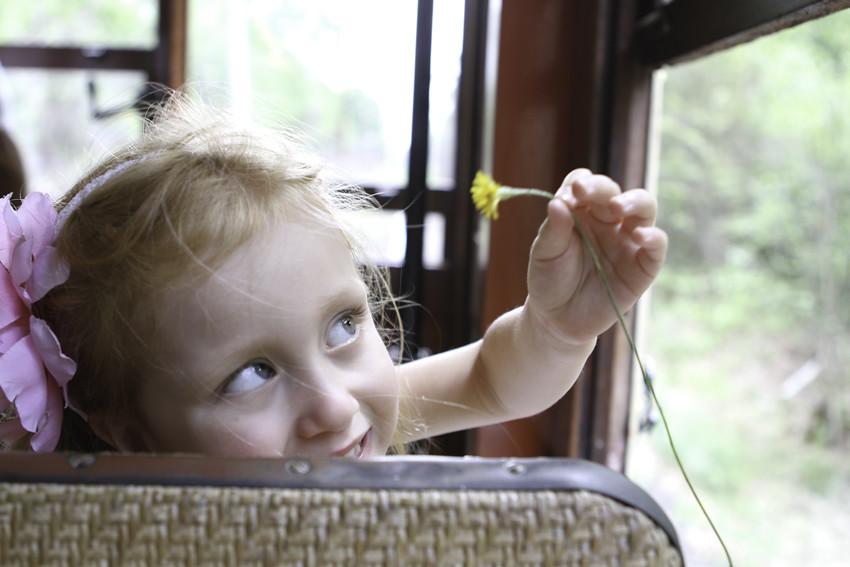 Trolley abi flower