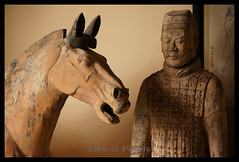A Man & His Horse (LifeisPixels - Thanks for 650,000 views!) Tags: from horse museum giant lens thailand temple is site bc priceless sony tomb great chinese entrance sala figure warrior historical 16 alpha 221 which shi sian artifacts dt sien emperor authentic usd qin fee 207 the countess excavated merely chonburi a55 anek kuson viharn 18250mm lifepixels viharnra 356318250 huangthe sienchonburithailand objectsand lifeispixels sonyalphathailand lifeispixelscom