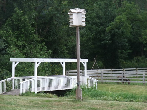 Footbridge at Flying J Farm