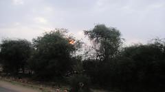Maasai Mara Game Reserve (burningmax) Tags: africa park travel game kenya wildlife reserve safari mara giraffes lions elephants hippopotamus masai maasai buffalos hippos zebras antilopes burningmax cheethas