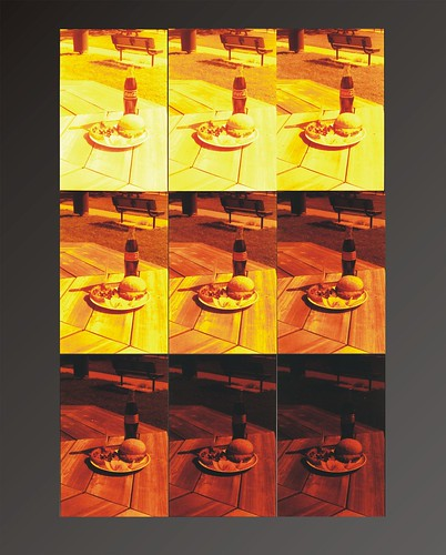 Redscale picnic; 9 scaled shots