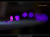 Day 156/365 (Thibault B Photography) Tags: wood light portrait selfportrait france macro eye photoshop grenoble self dark studio aperture nikon raw dof close view purple autoportrait bokeh lumière flash tripod dream violet sigma oeil sombre filter portraiture micro vue bois manfrotto pdc macrophotography isère trepied macrophotographie strobist rève manfrotto190xprob d300s nikond300s 1020landscapepaysageapperturecs5photoshopspeedlightnikon clsclssb900cactuskf36vivitarbackgroundsoftboxumbrellagelcokinfilterlens