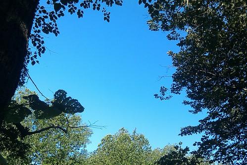 Weikert: clear sky