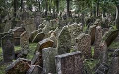 Il cimitero di Praga (Fil.ippo) Tags: travel cemetery landscape prague praga jewish eco umberto viaggi hdr filippo cimitero ebraico ebreo d5000