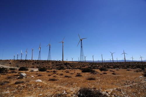 Palm Spring Windmill