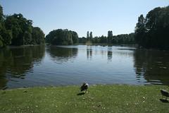Kleinhesseloher See - Englischer Garten München