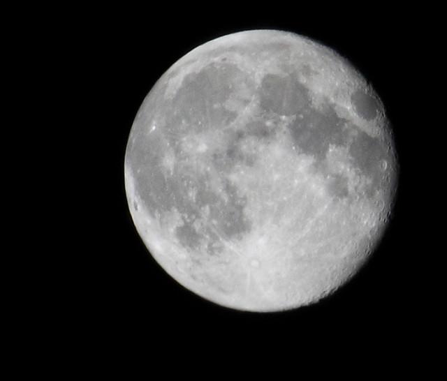 _MG_3576_Luna 2