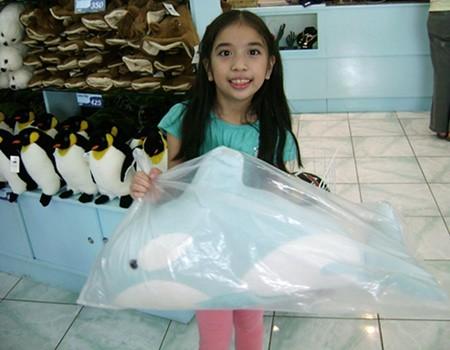 dolphin-souvenir