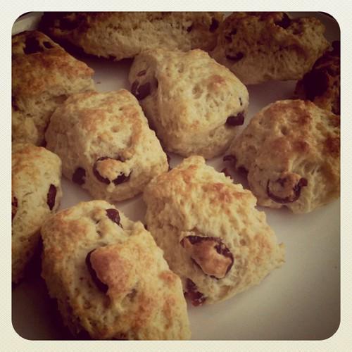 Homemade scone by ʘ ‿ ʘ synthetic happiness Ò ‿ Ó