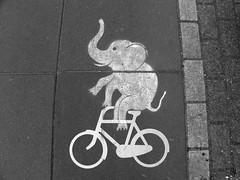 stencil (wojofoto) Tags: streetart holland amsterdam graffiti stencil nederland netherland swift stencilart olifant fiets dusartstraat wolfgangjosten wojofoto iamswift