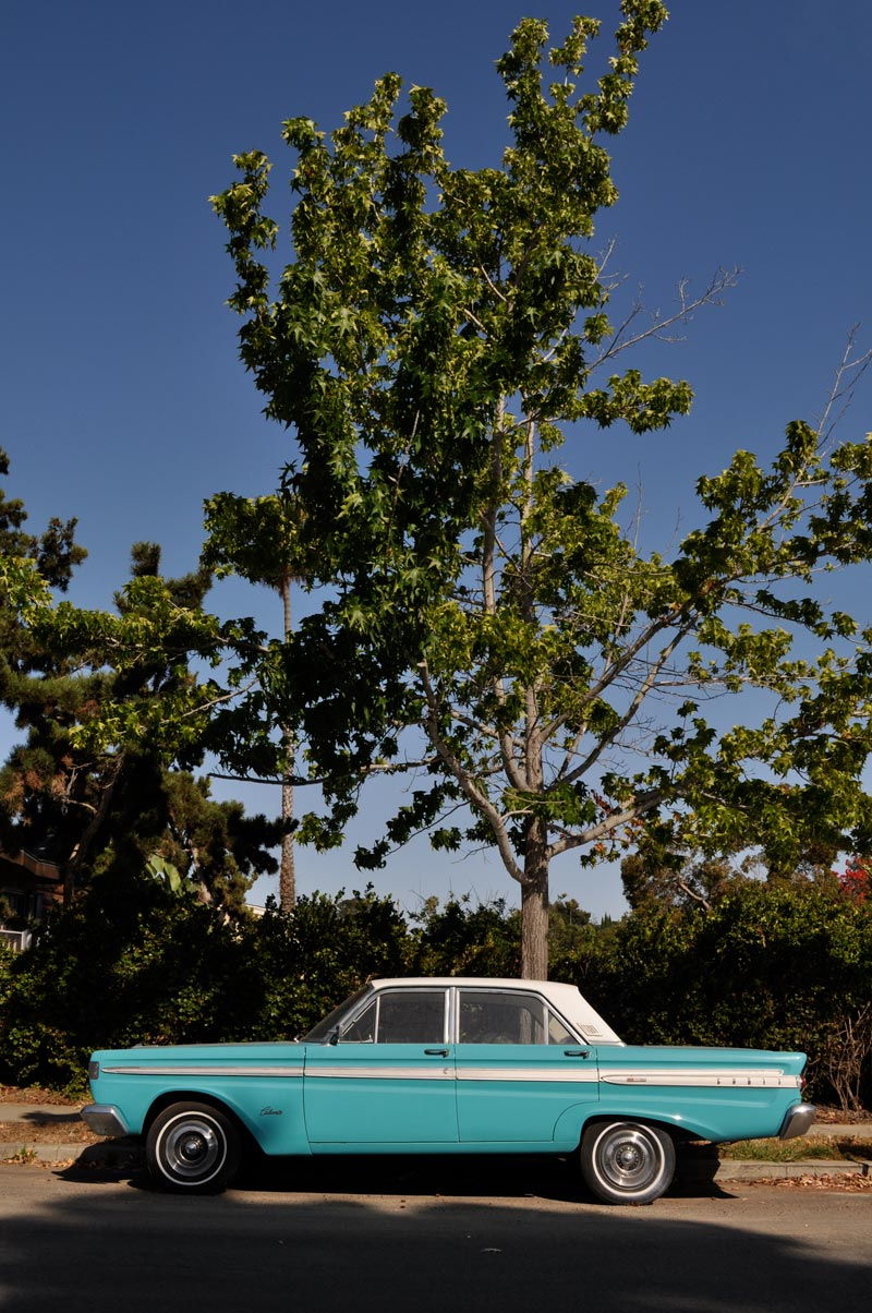 Blue car and tree original; click for main post