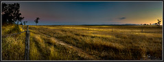 Thompson point Rd- (Mike Schurmann) Tags: sunset point bush australian thompson rockhampton outbacklandscape