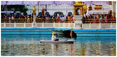 sarowar sewa (drkingks) Tags: amritsar goldentemple sarowar oldsewadar