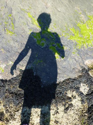 shadow too