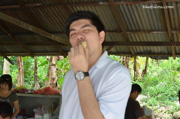 balik pulau durian (17)