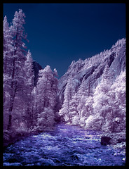 Yosemite in IR 3 (melekzek) Tags: ir canoneos20d yosemite infrared tiltshift tse24mm