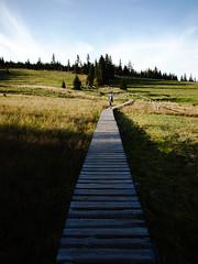 Polana, Karkonosze Mountains (Olgierd Pstrykotwrca) Tags: mountains landscape poland polska polen gry sudety karkonosze karpacz m43 gf1 krajobraz giantmountains sudetes micro43 panasonicgf1