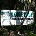 Lone Pine Koala Sanctuary_1