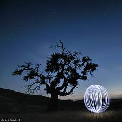 Jugando ((||)) (Carlos J. Teruel) Tags: longexposure espaa luz arbol nikon nightshot paisaje murcia nocturna nocturnas esfera d300 2011 tokina1116 xaviersam losroyos