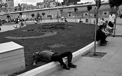 Sleping it off ! Istanbul (Neil. Moralee) Tags: blackandwhite boys beer drunk turkey pub drink neil streetlife oldman istanbul oldmen hemyock moralee neilmoralee lototennorwayneilmoralee