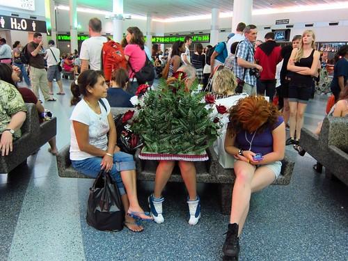 Staten Island Ferry Terminal: Plant girl