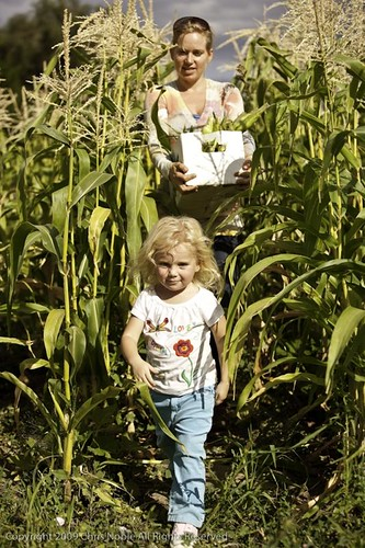 Jill Bell and daughter Anna helping with the summer harvest for CSA shares.