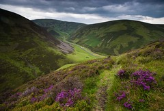 Hidden treasure (Kenny Muir) Tags: landscape scotland countryside bell heather pass scottish hills southern dumfries galloway uplands wanlockhead lowther leadhills a900 mennock