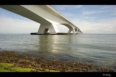 Wet feet? (Just me, Aline) Tags: bridge holland netherlands nederland zeeland brug zeelandbrug colijnsplaat
