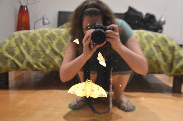 me and mothra at luminhaus
