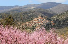 village-eus-canigou (Matox Visuals) Tags: sun mountain france nature europe village pueblo eu catalonia most lovely hilltop pyrenees joli beautyfull canigou eus perch pittoresque