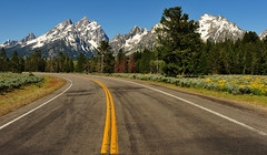 The Mountains Beckon (Jeff Clow) Tags: wildflowers tetons roadway grandtetonnationalpark gapr tetonparkroad dcptjuly2011