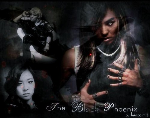 (10-19) The Black Phoenix by Jordayn Shelander