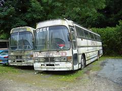 Deeble, Darleyford Volvo B10M Duple Goldliner FHS 731X (miledorcha) Tags: park bus volvo coach cornwall hamilton coaches psv pcv dft liskeard b10m duple deeble goldliner darleyford b10m61 fhs731x odj584w