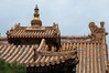 _DSC7892 (durr-architect) Tags: china school court temple peace buddhist beijing buddhism prince palace monastery harmony lama tibetan han dynasty emperor qing kangxi yonghegong lamasery monasteries yongzheng eunuchs