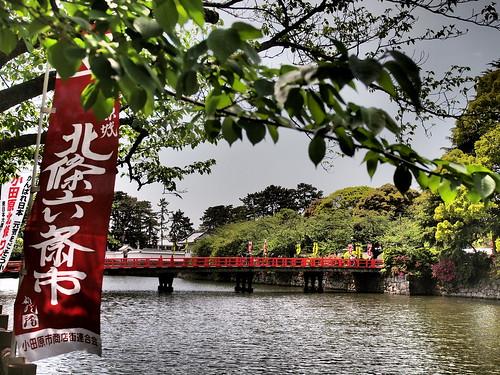 小田原城 学橋(まなびばし)