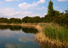 Eye Green Nature Reserve 3.jpg (uplandswolf) Tags: eye lakes ponds peterborough cambridgeshire naturereserves eyegreen