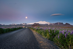 Day 209 - Snfellsjkull (Inglfur B) Tags: road flowers moon west island photo iceland picture glacier snfellsjkull sland mynd snfellsnes snaefellsjokull inglfur  ingolfur vesturland  ingjaldshll ingjaldshlskirkja inglfurb