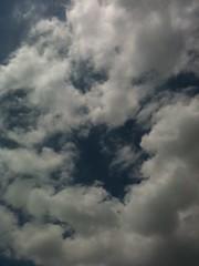 夏の空の写真