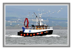 AEOLUS, TROON (Time Out Images) Tags: coast scotland clyde boat fishing firth troon ayrshire aeolus buoyant of ayrshirecoast