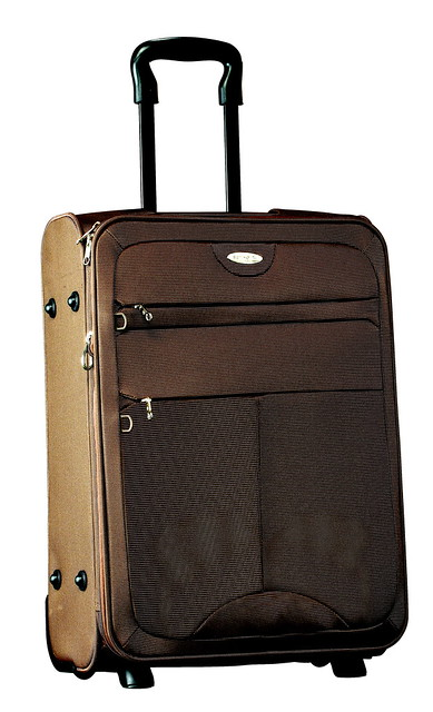 Dublin Brown Luggage