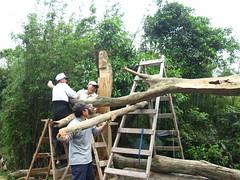 照片提供:新北市生態生活促進會陳瑞娟理事長