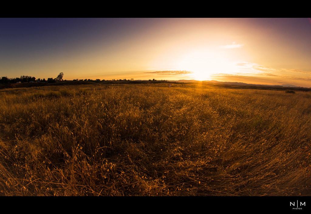 IMAGE: http://farm7.static.flickr.com/6030/6004883522_345bd93018_b.jpg