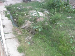 Abandono (Itnetweb) Tags: de no marcela da lagoa total abandono aude estabilizao