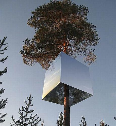 treehotel_2_52