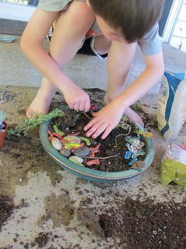 Making Dino Gardens #4