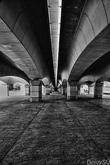 En las entraas del puente (Deivysv) Tags: bridge blackandwhite white david black blancoynegro blanco architecture canon puente eos blackwhite arquitectura dof negro bn 1000d eos1000d deivysv