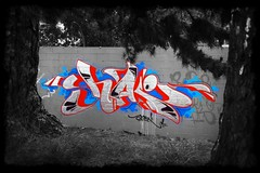 (Fresh Green) Tags: blue red freestyle chrome shake rainydays rtr littlejam akgraffiti