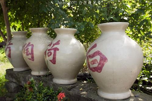 20110620白河蓮花季-5758