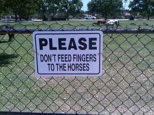 Please Don't Feed Fingers to Horses