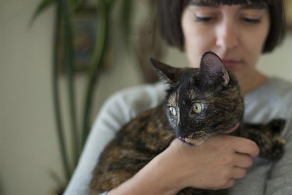 calivintage: momo cat